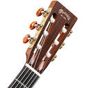 Electro-classical guitars